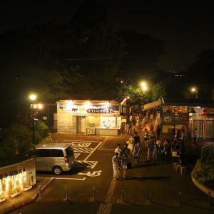 """野毛山動物園「ナイトのげやま」夜の動物が活動して楽しい""""無料""""の夏イベント!"""