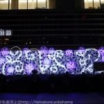 横浜駅西口「スターライトヨコハマイルミネーション」2015年のテーマはブルーローズ!
