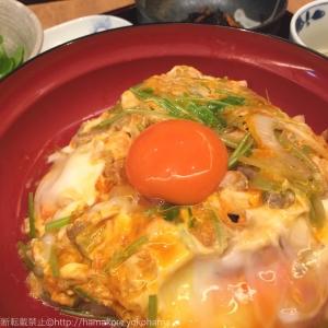 金賞受賞!鳥幸食堂 ヨドバシ横浜の親子丼は究極卵を使ったトロットロの絶品グルメ