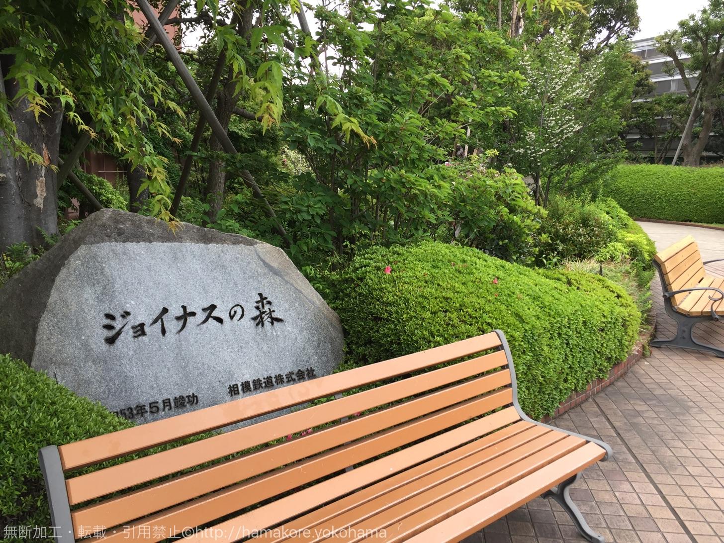 横浜駅 ジョイナスの森彫刻公園
