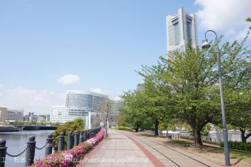 横浜・桜木町 お散歩コースに「汽車道」がおすすめ!