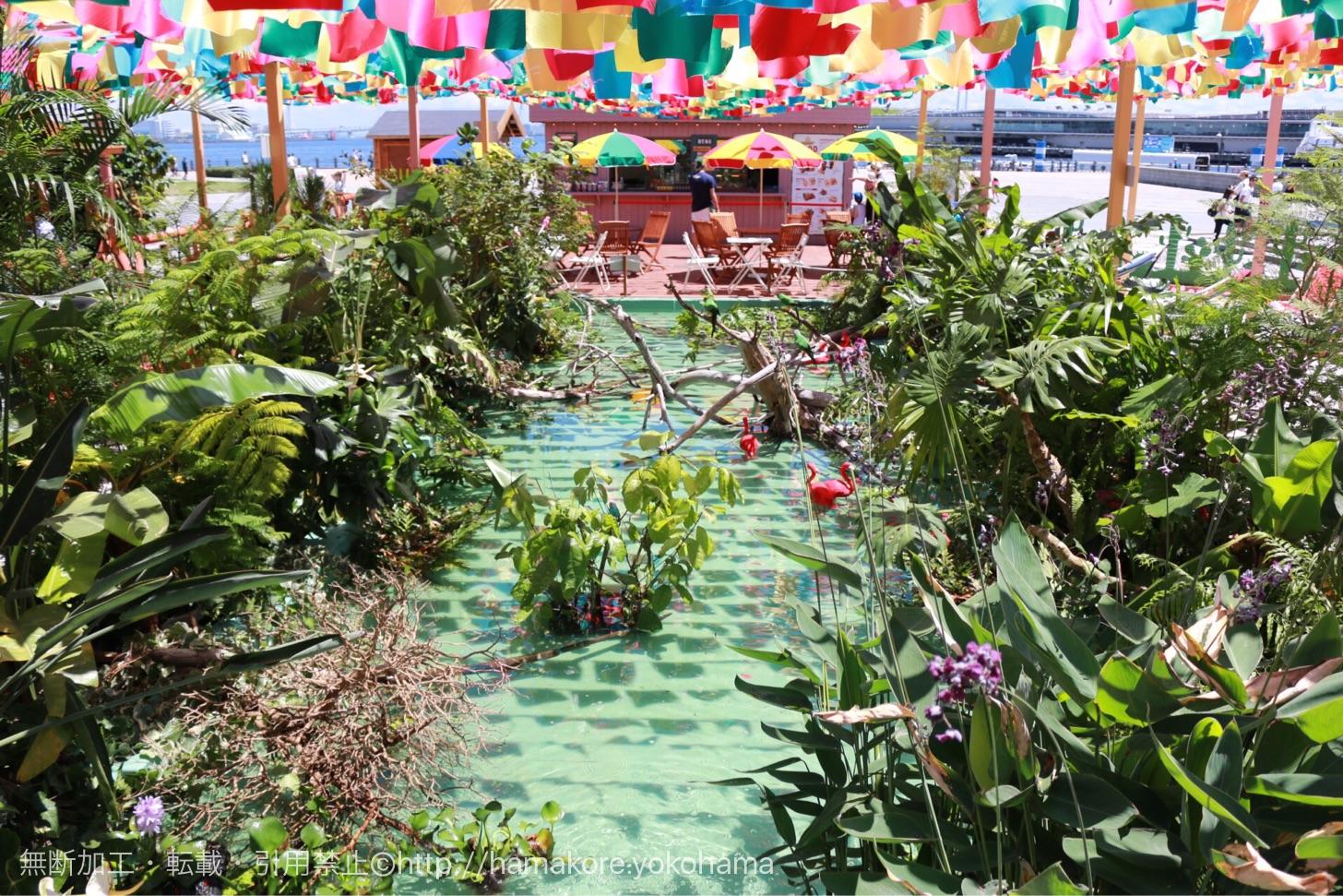 アマゾン川をイメージした水辺