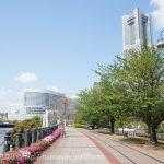 お散歩コースにおすすめ!横浜・桜木町の汽車道