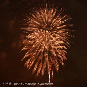横浜花火「横浜スパークリングトワイライト」大さん橋プレミアシート(有料)の感想とおすすめポイント
