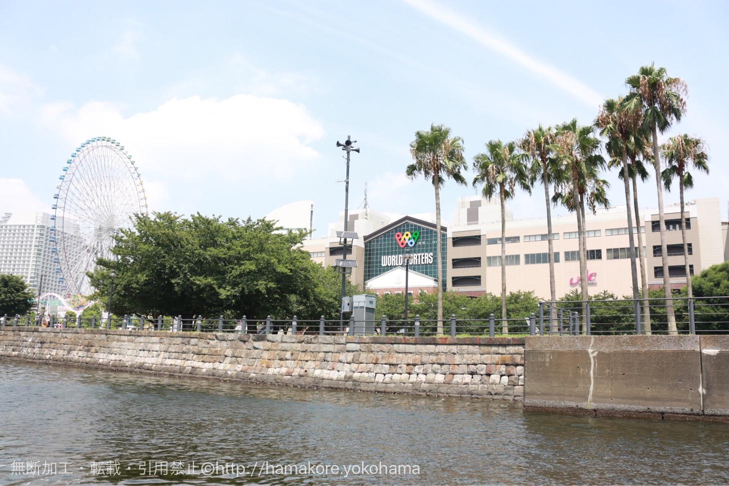 水陸両用バス「スカイダック」 水辺から見た横浜ワールドポーターズ