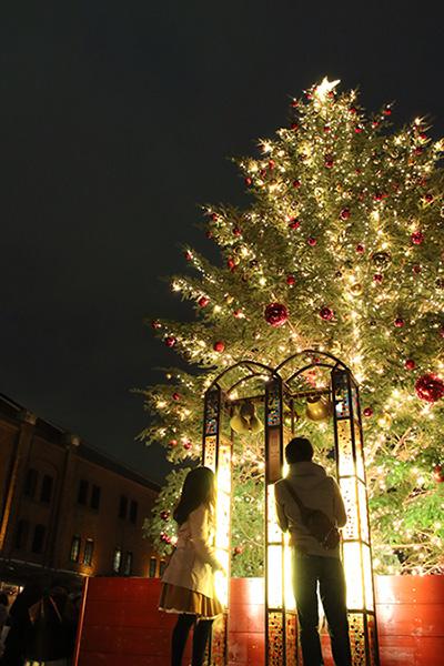 高さ約10メートルの本物のモミの木・クリスマスツリー