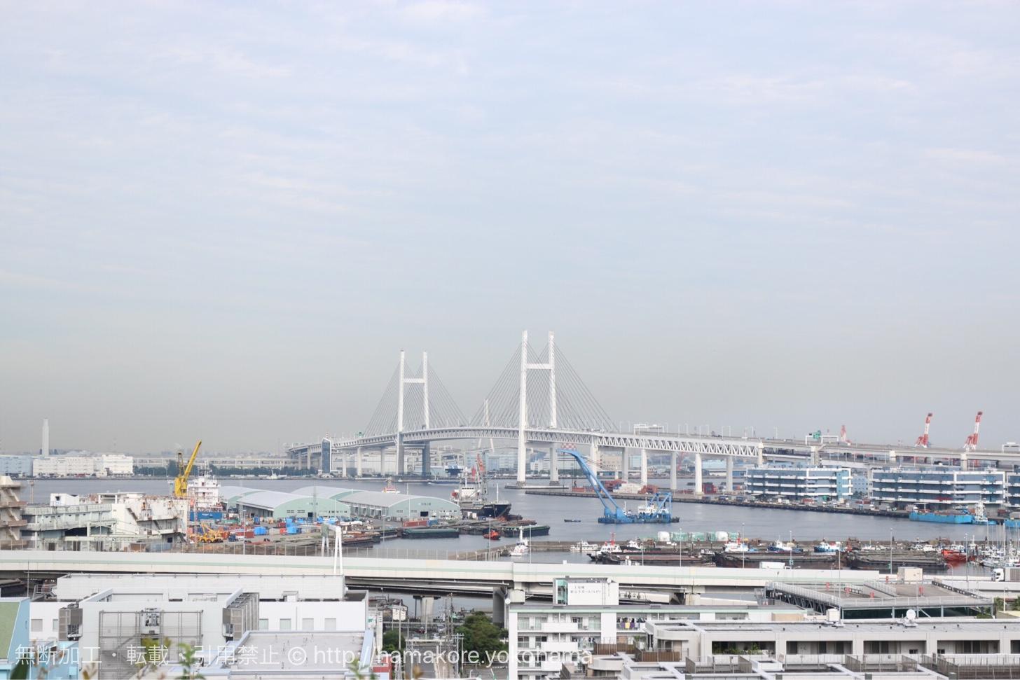港の見える丘公園から見た横浜ベイブリッジ