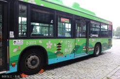 ぶらり観光SAN路線「三渓園」行きバスの乗り場はどこ?コースや所要時間は?