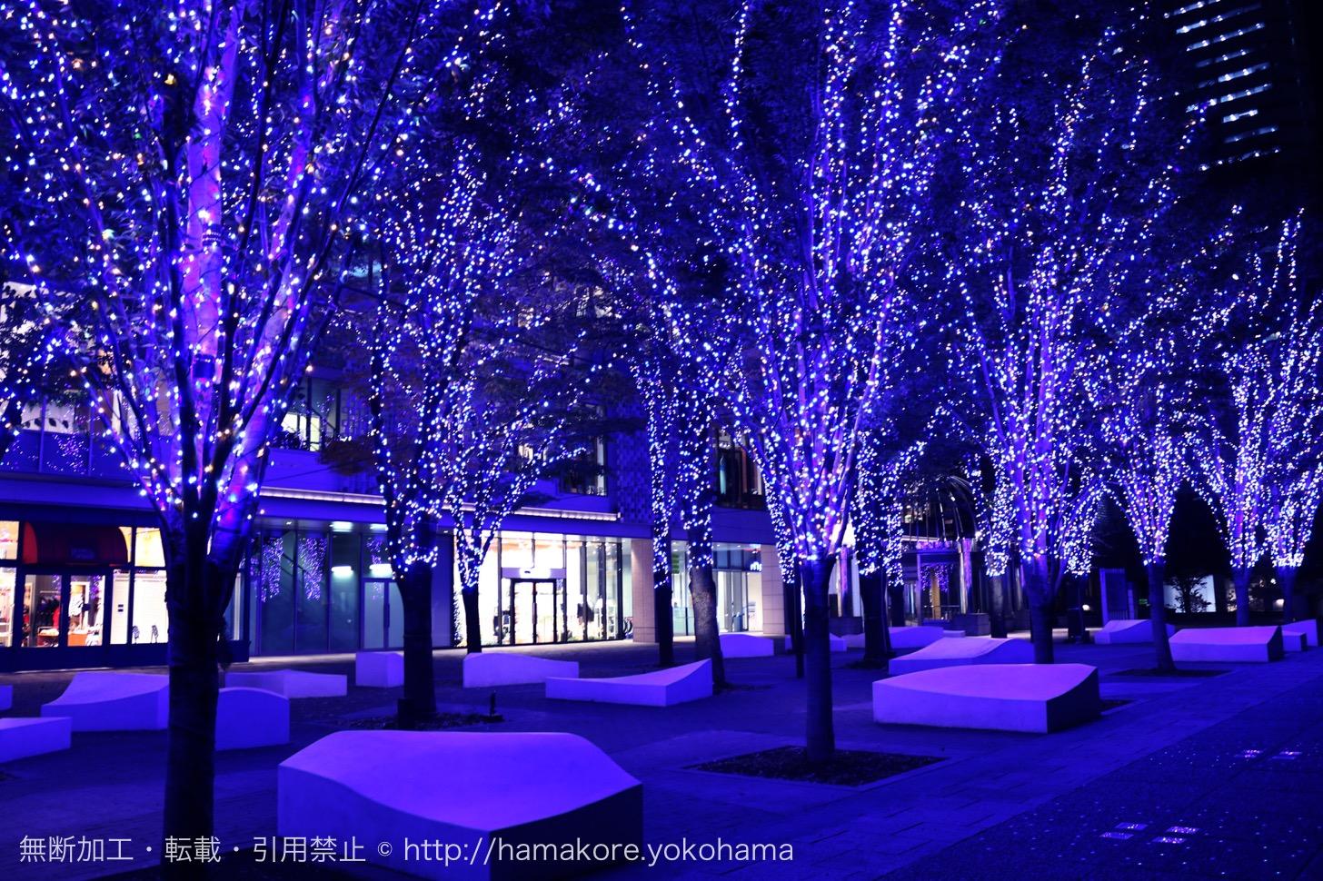 MARK IS Bright Christmas Tree・グランモール公園 Bright Illumination