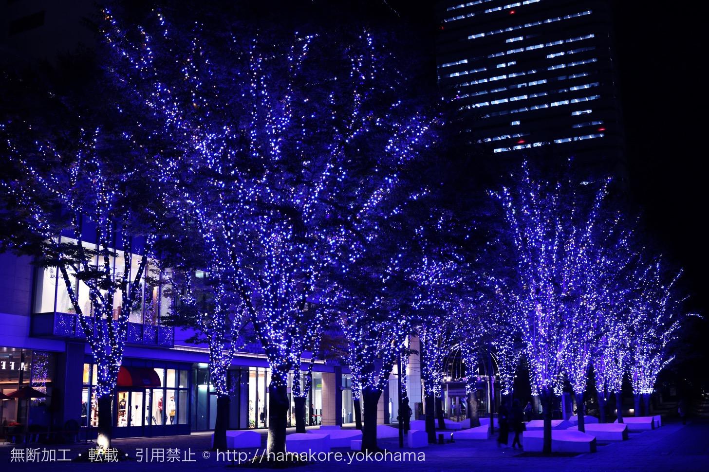 グランモール公園 Bright Illumination