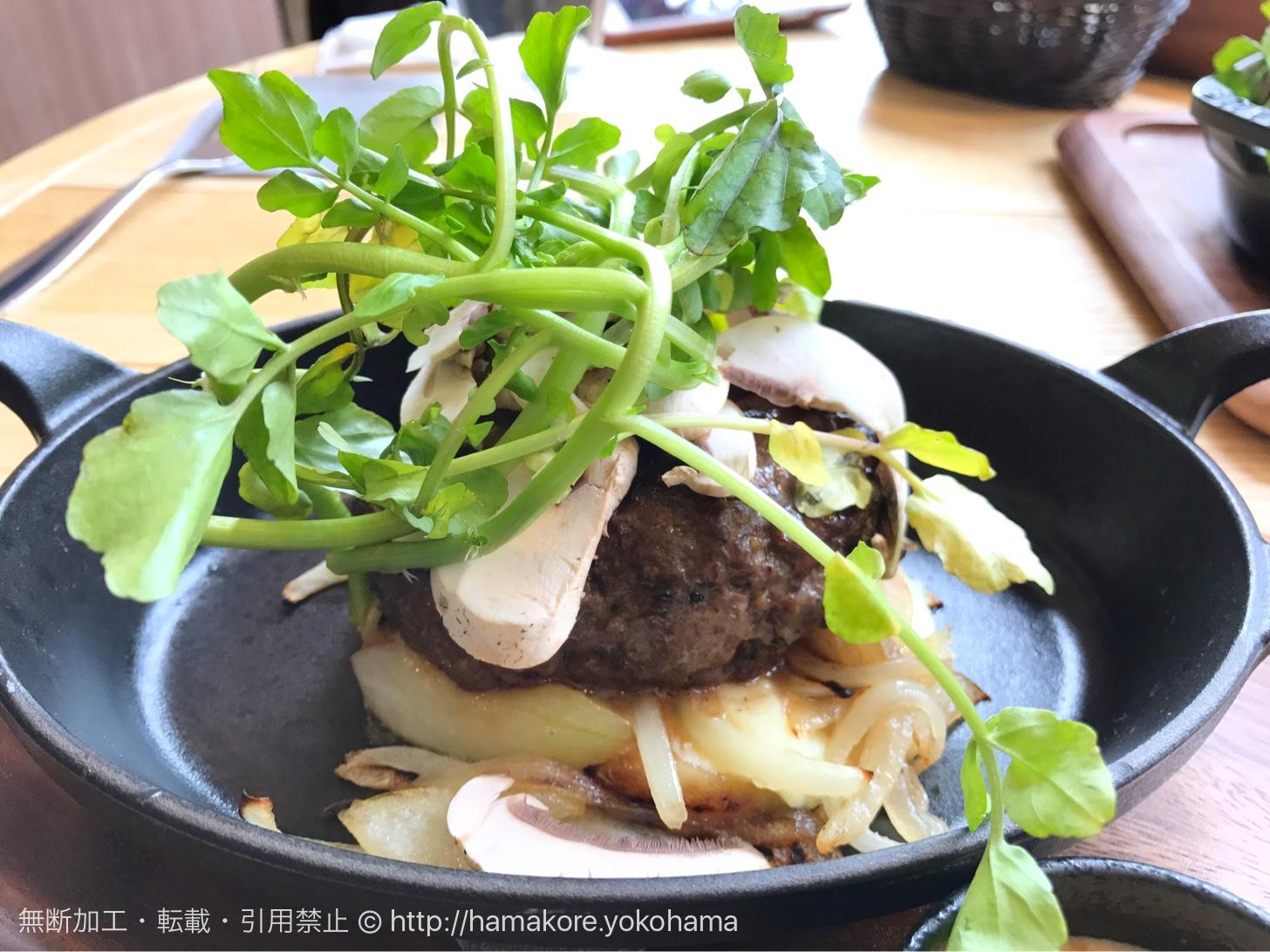 ソールズベリーステーキ ローストオニオンとクレソン マッシュルームのサラダ(1,200円)