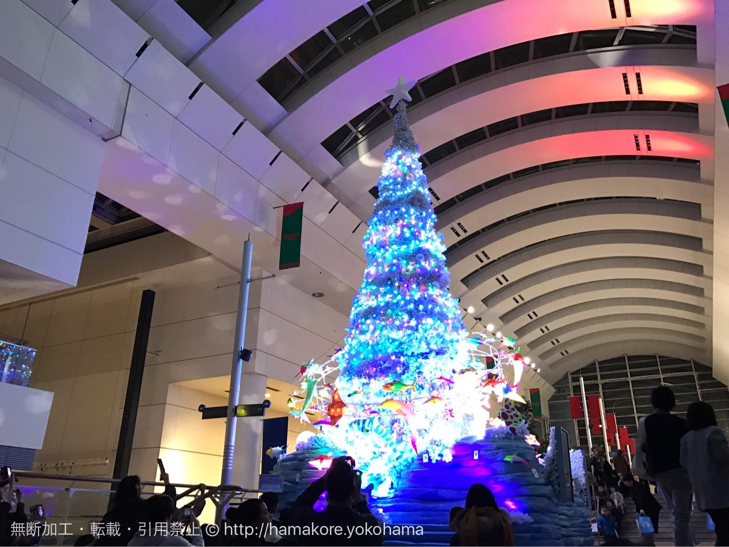 ショーを見せるクリスマスツリー