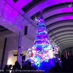 2016年 クイーンズスクエアのクリスマスツリーの光と音のショーが凄く良い!点灯スケジュールについて