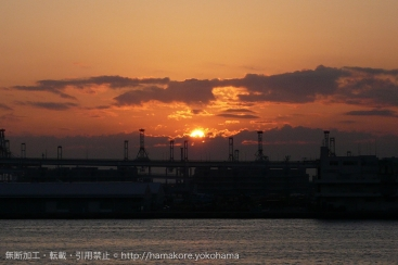 2017年 横浜周辺 正月1月1日から営業しているショッピングモール一覧