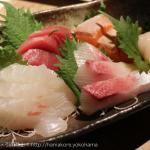 横浜駅すぐ個室あり!居酒屋「唯一無二」が値段以上にお得な料理が揃って満足度120%【PR】