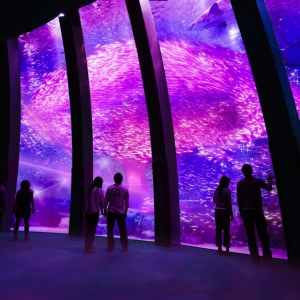 横浜・八景島シーパラダイス「春の楽園」が2017年3月4日より開催!新感覚お花見スポットの登場
