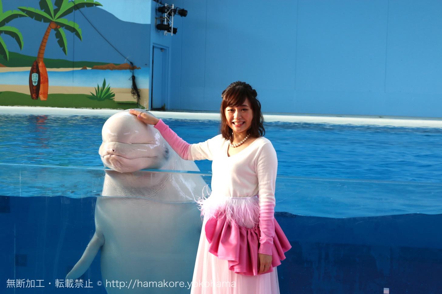 シロイルカにタッチして笑顔が溢れる大原櫻子さん