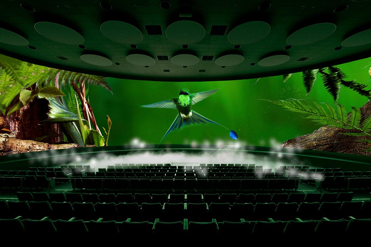 オービィ横浜 日本最大級のスクリーンで観る最新作「ふしぎの森のハチドリ」を2017年3月25日より公開!