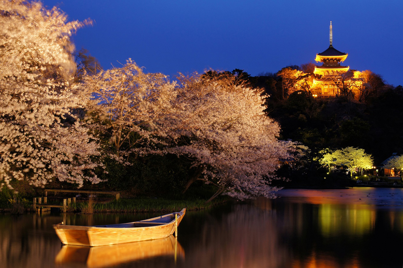 三渓園「観桜の夕べ」を2017年3月25日より開催!桜や三重塔などをライトアップ
