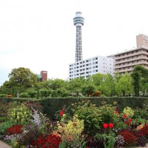 2017年5月20日放送のアド街ック天国は「横浜 山下公園通り」に出没!