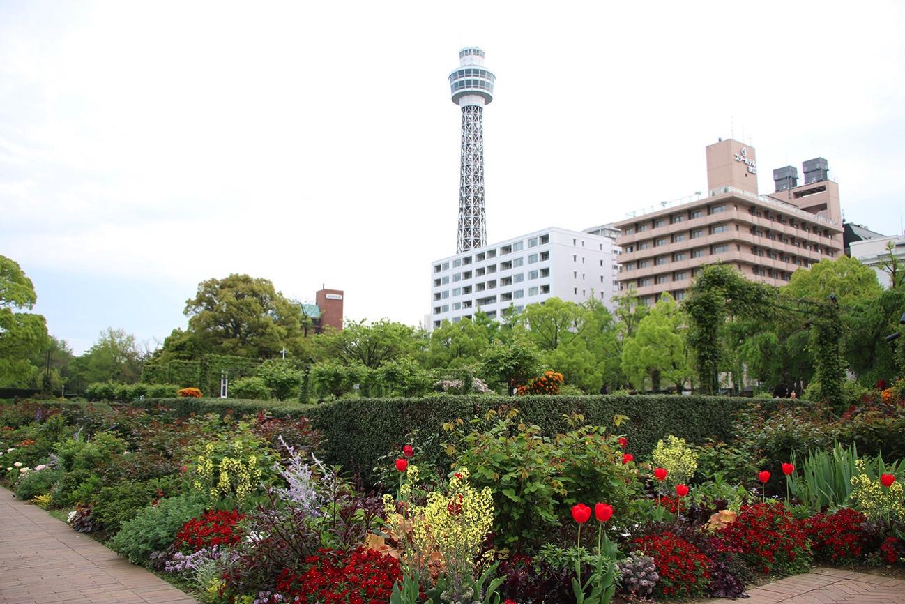 2017年5月20日のアド街ック天国に横浜 山下公園が登場!