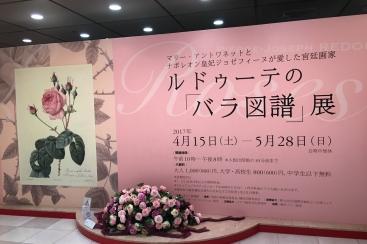 横浜駅 そごう美術館を120%お得に楽しむ裏ワザ!ルドゥーテの「バラ図譜」展に行ってきた