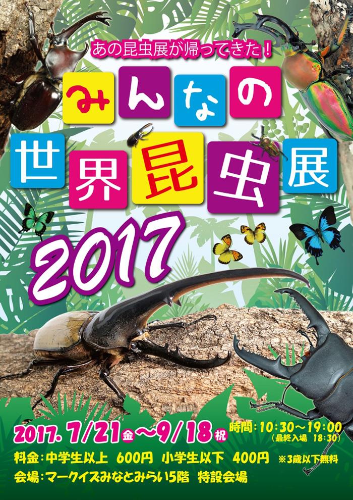 オービィ横浜「みんなの世界昆虫展 2017」を開催中!世界の珍しい昆虫が集合