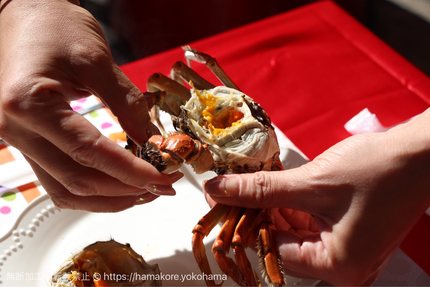 上海蟹の剥き方