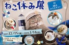 横浜みなとみらいで「ねこ休み展」が2017年12月15日より開催!横浜開催は初
