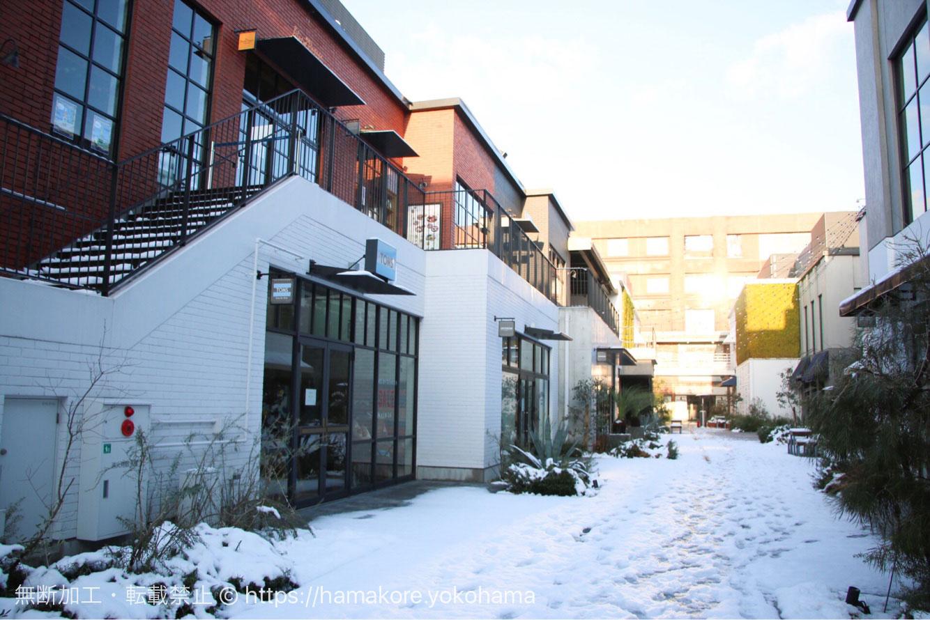 雪が積もったMARINE & WALK YOKOHAMA