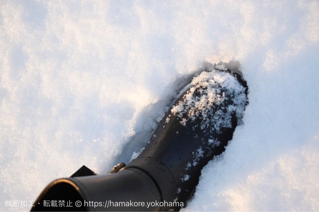 10センチ近く積もった横浜の雪