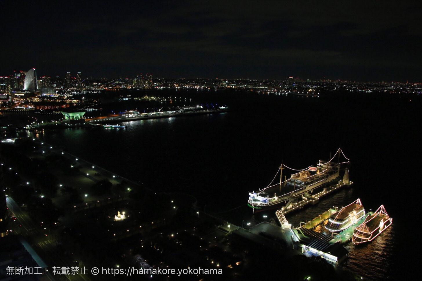 横浜マリンタワーから見た夜景 山下公園側