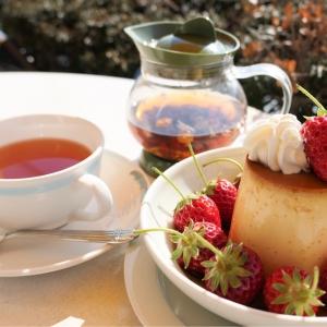 神奈川スイーツ「マーロウ」本店はカフェ併設!海を眺めて食べる極上・焼きプリン