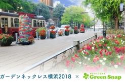 ガーデンネックレス横浜2018、植物アプリ「GreenSnap」と連携して花の名前を知れるように