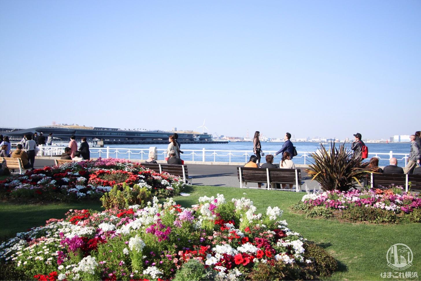 山下公園 ガーデンネックレス横浜
