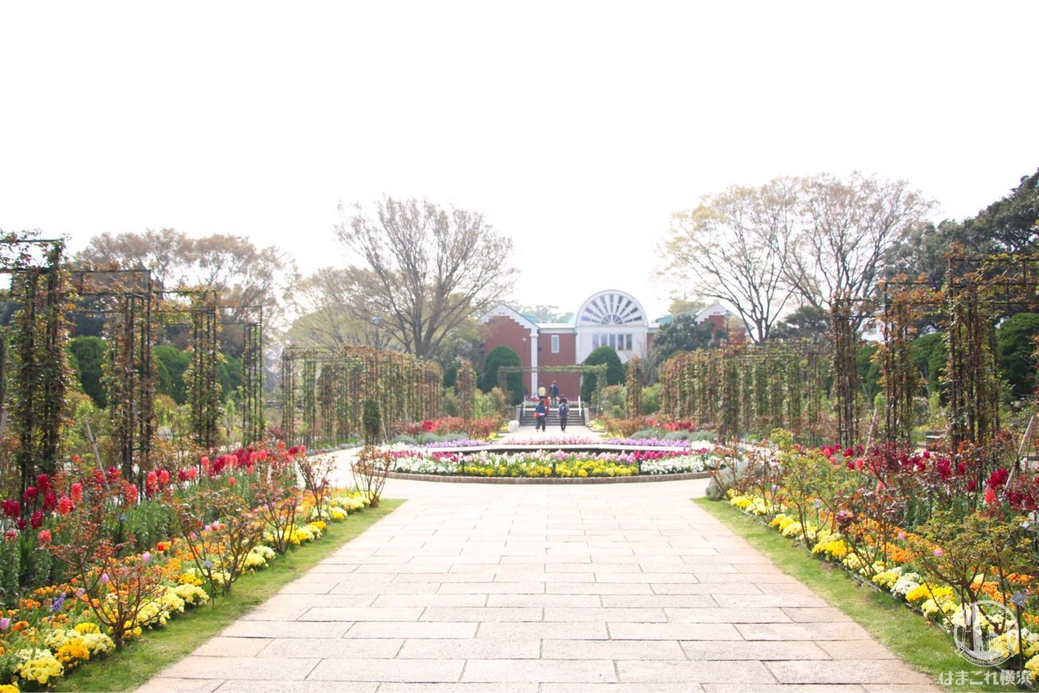 港の見える丘公園 ガーデン