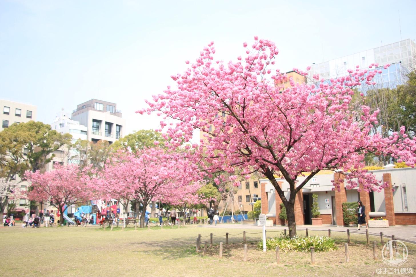 関内・ガーデンネックレス横浜