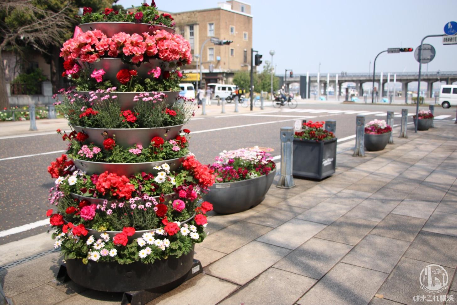 日本大通り・ガーデンネックレス横浜