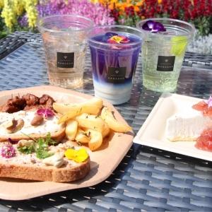 フラワーガーデン 2018が横浜赤レンガ倉庫で開催!4つの花畑と食べられる花が横浜の春を彩る