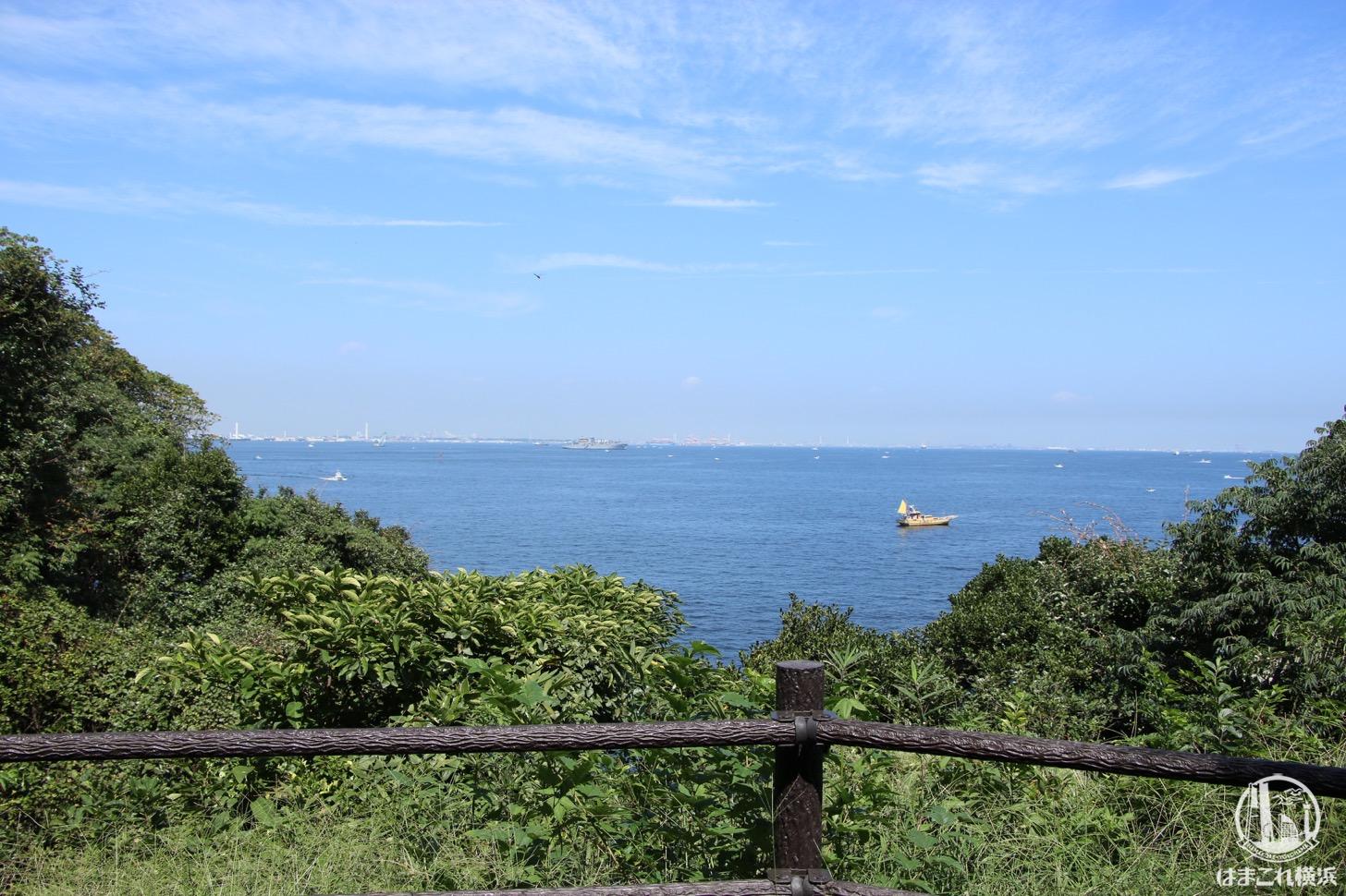 展望広場から見た海