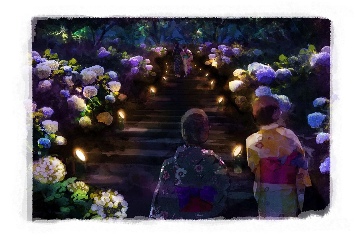 夜のあじさい園路