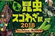 オービィ横浜 夏季イベント「変身!昆虫スゴわざ展」を7月1日より開催