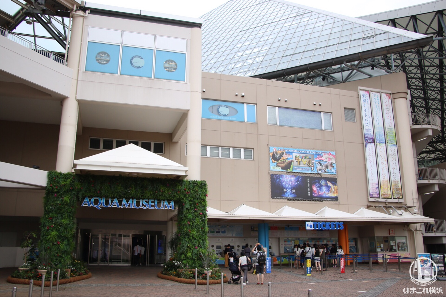 横浜・八景島シーパラダイス アクアミュージアム 外観