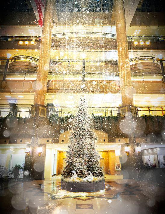 ランドマークプラザ クリスマスツリー イメージ
