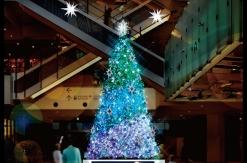 2018年 マークイズ みなとみらいのクリスマスツリー点灯は11月14日より