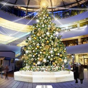 2018年 横浜ベイクォーターのクリスマスイルミネーションは11月3日より開催