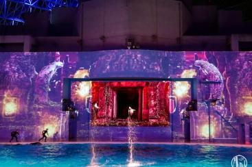 シーパラで圧倒的スケールの新ナイトショー・イルミネーション開催!神秘的な夜に
