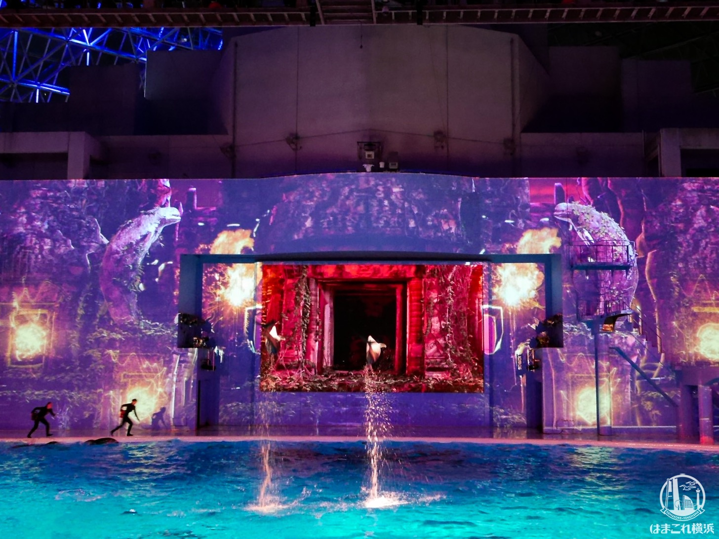 シーパラの冬の夜は神秘的!圧倒的スケールの新ナイトショー&イルミ