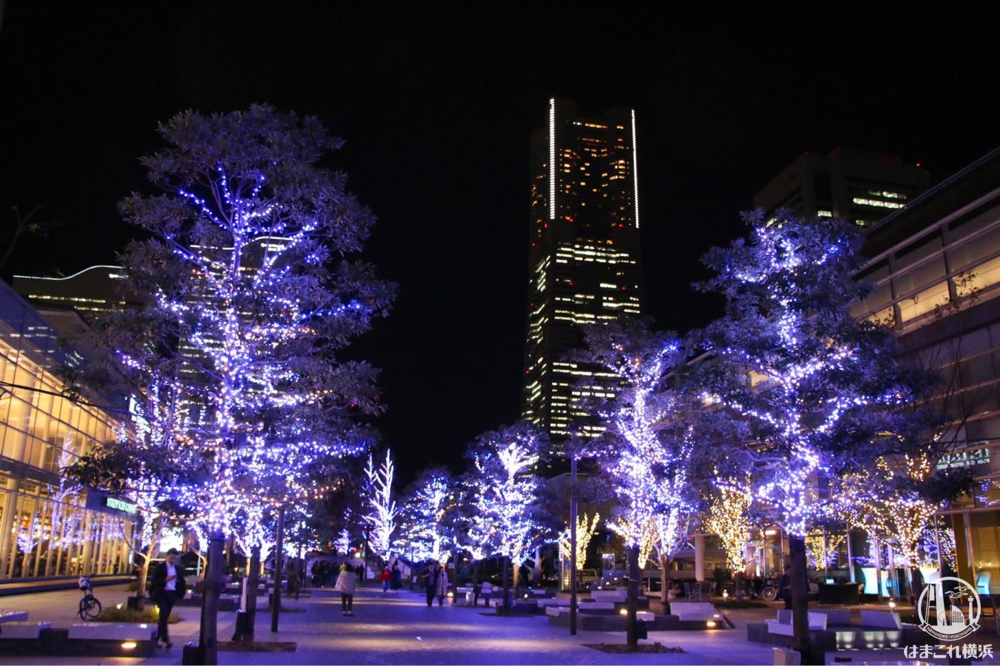 ら横浜ランドマークタワー夜景とヨコハマミライト