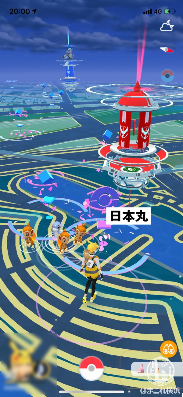 コミュニティ・デイ開催当日のみなとみらい 日本丸メモリアルパーク